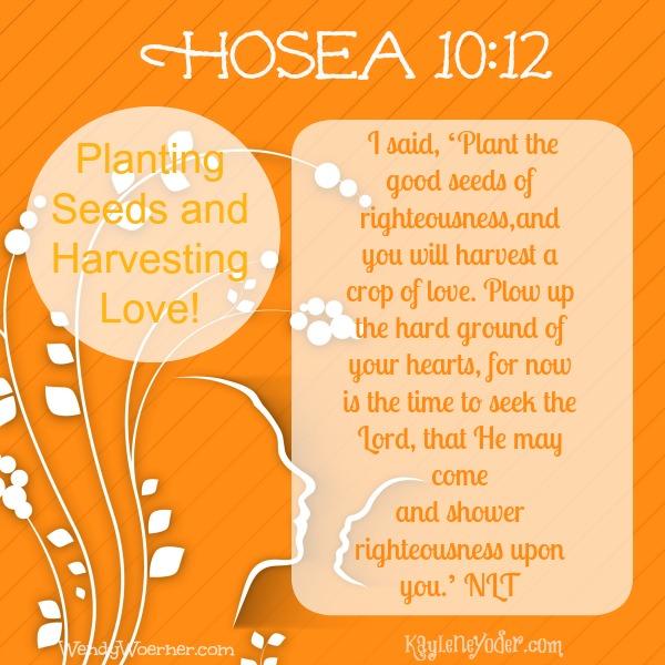 Planting Seeds and Harvesting Love post for Kaylene Yoder title image