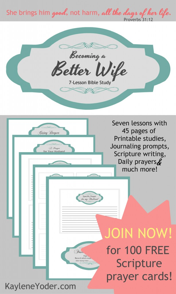 Becoming a Better wife is a 7-lesson Bible study for women who want to refine their mission in becoming a godly wife