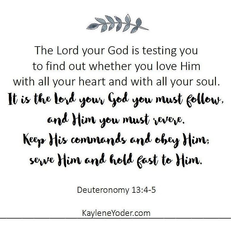 Deuteronomy 13 and 4