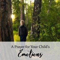 23. A Prayer for Your Child's Emotions