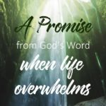 A Promise from God's Word When Life Overwhelms